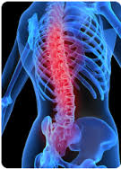 Image result for ultrasound therapy chiropractic